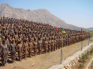 Kurdish PKK militants stand in formation.